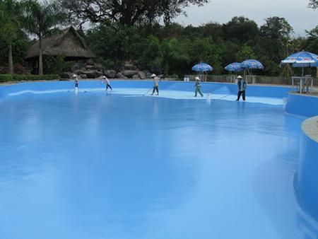 sơn bể bơi